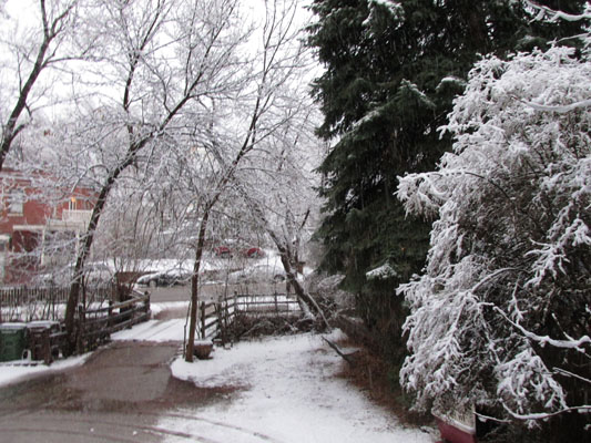 Snowy Afternoon in Manitou Springs