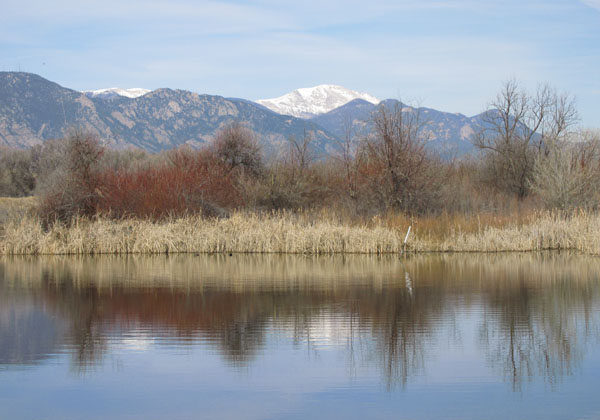 Pikes Peak Reflection on a pond Fountain Valley Nature Center