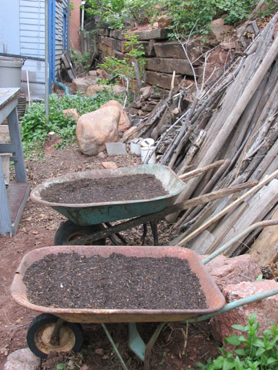 Wheelbarrows for Kale